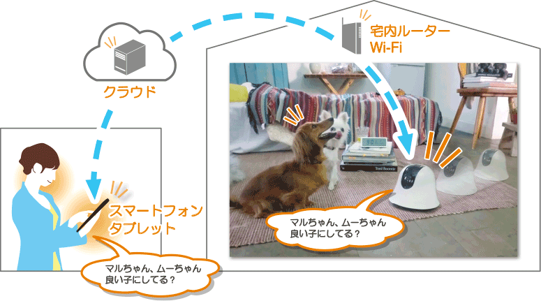 ilbo ネットワークカメラ